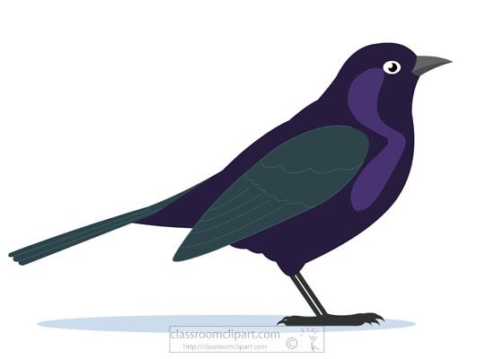 blackbird-bird-clipart.jpg