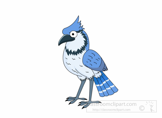 blue-jay-bird-winter-bird-116-clipart.jpg