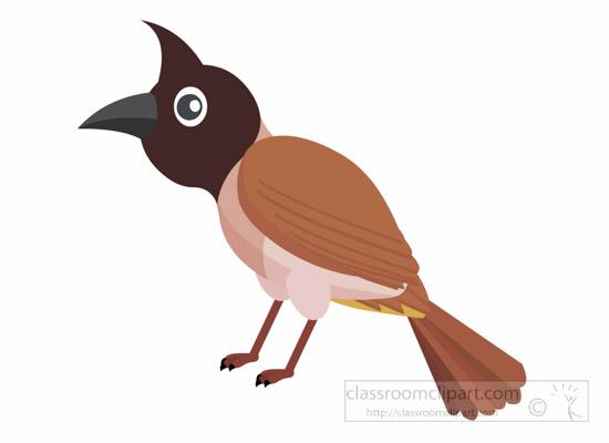 bulbul-bird-clipart-1014.jpg