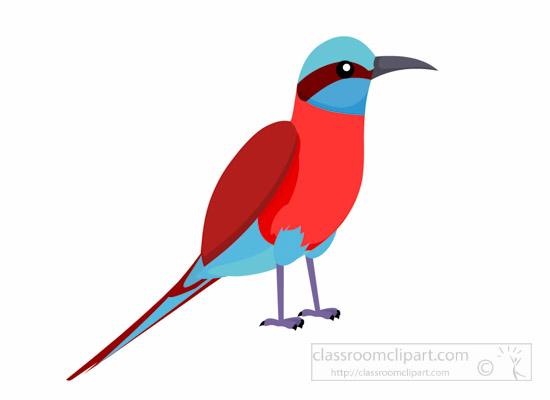 carmine-bee-eater-bird-clipart-1014.jpg