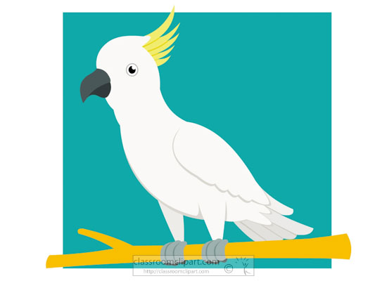 cockatoo-bird-clipart.jpg