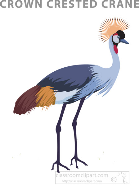 crown-crested-crane-burundi.jpg