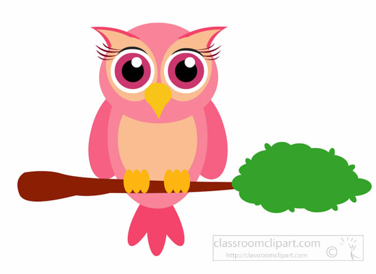 cute-cartoon-little-owl-bird-sitting-on-branch-animal-clipart.jpg