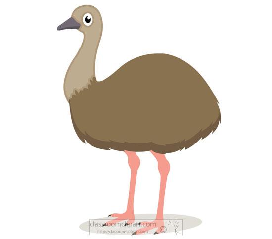 emu-bird-clipart-918.jpg