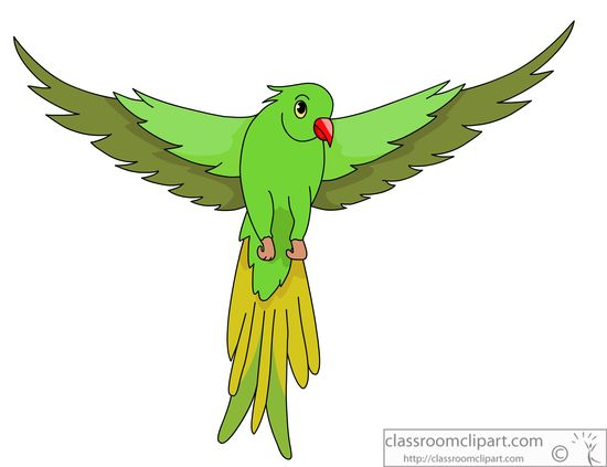 Bird With Open Wings Drawing Green-parrot-open-wings-914