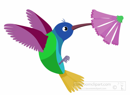 hummingbird-bird-clipart-1014.jpg