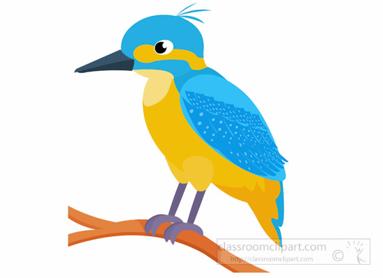 kingfisher-bird-clipart-1014.jpg