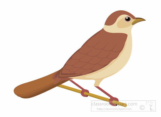 nightingale-bird-clipart-1014.jpg