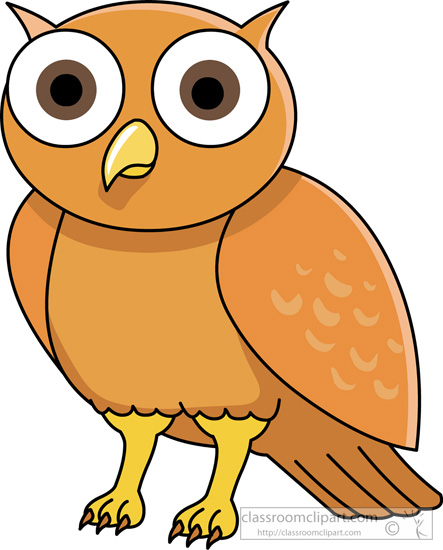 owl-with-big-eyes.jpg