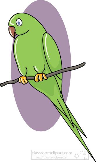 parrot_1_purple_22212.jpg