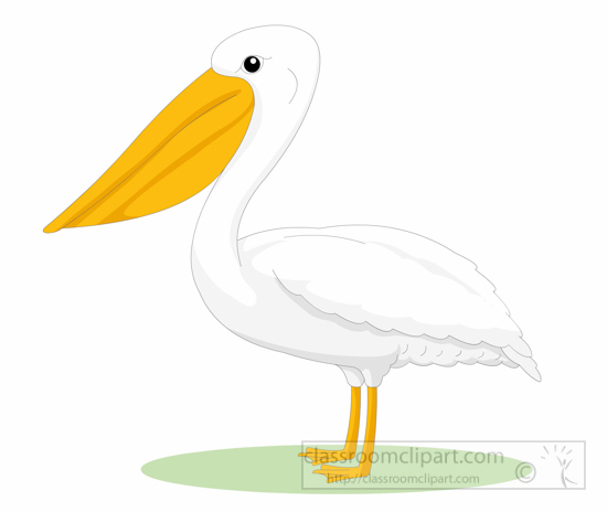 pelican-bird-side-view-clipart-6125.jpg