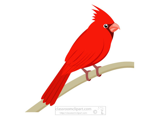 red-cardinal-bird-clipart.jpg