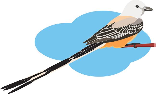 scissor-tailed-flycatcher-clipart.jpg