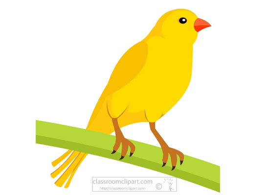yellow-canary-bird-clipart.jpg