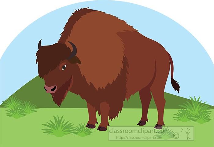 bison-animal-on-praire-clipart.jpg