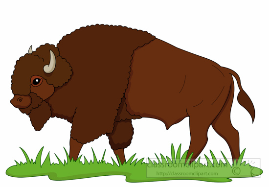 bison-on-praire-clipart-6125.jpg