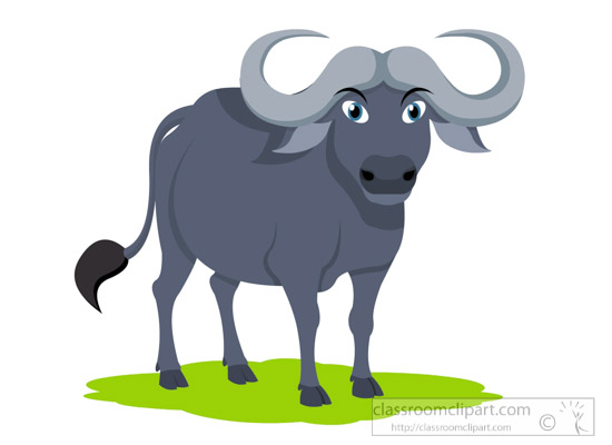 water-buffalo-clipart-615.jpg