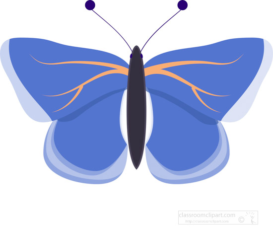 blue-and-orange-butterfly-clipart.jpg