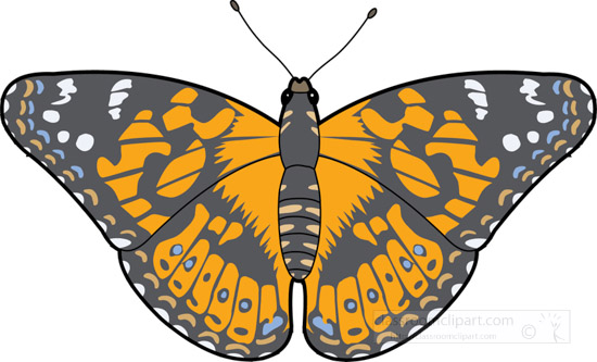 butterflies-_painted_lady_butterfly_726.jpg