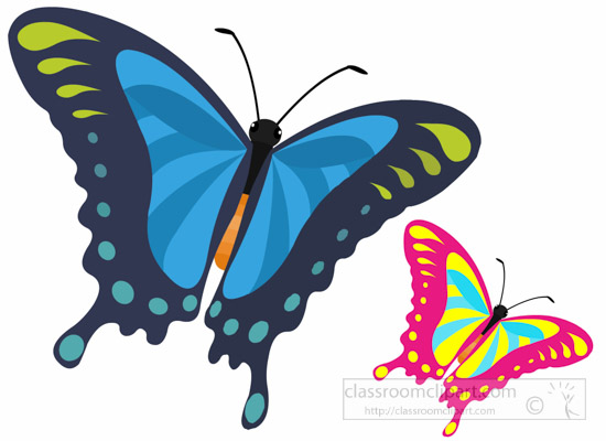 butterfly-insect-clipart.jpg