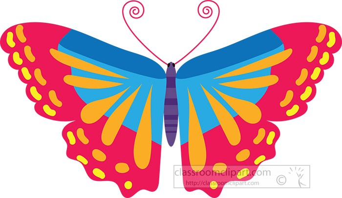 colorful-pink-orange-blue-vector-butterfly.jpg