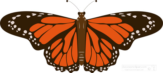 orange-and-black-butterfly-clipart.jpg