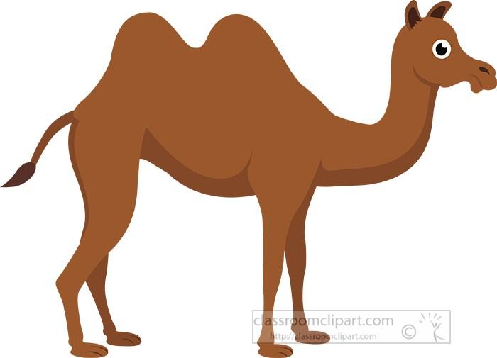 bactrian-mongolian-camel-clipart.jpg