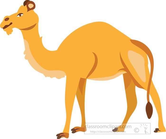 camel-standing-on-all-fours-illustration-clipart.jpg