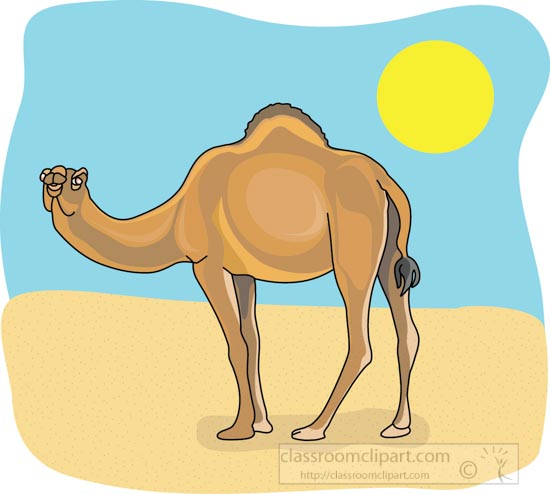 Download dromedary_camel_4_212b