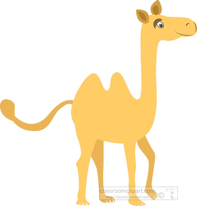 standing-cartoon-style-camel-vector-clipart.jpg