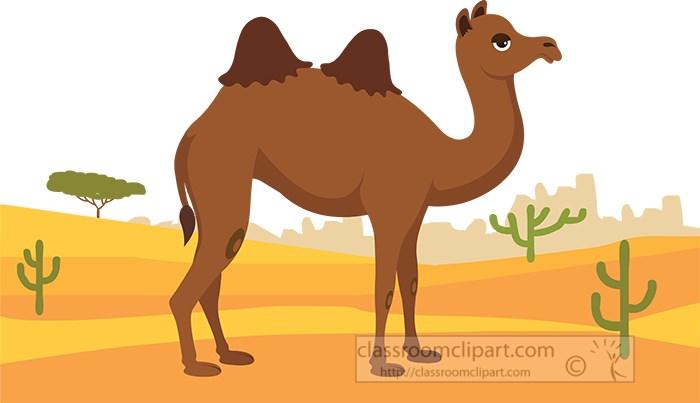 two-humped-camel-staniding-in-desert-clipart.jpg
