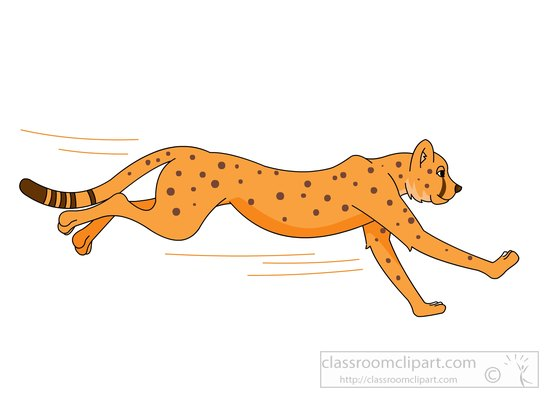 free cheetah clipart clip art pictures graphics illustrations rh classroomclipart com free cheetah clipart cheetah clip art face