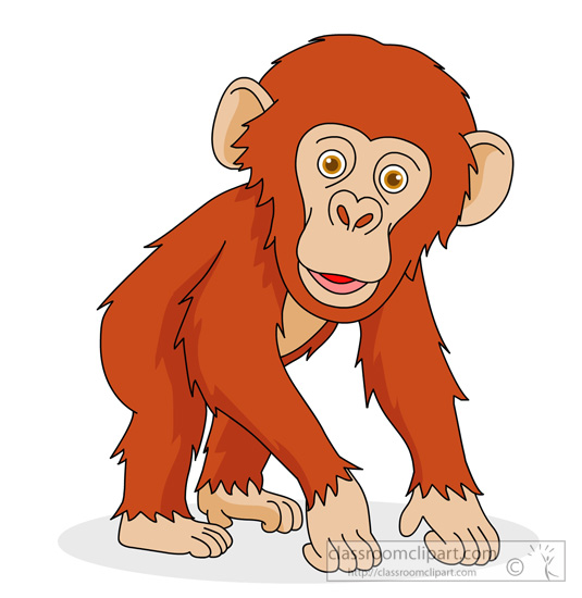 chimpanzee clipart baby chimpanzee clipart classroom 200 Drawing of Chimpanzees chimpanzee clipart free