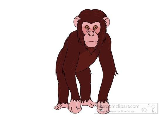 chimpanzee clipart chimpanzee clipart 72111 classroom chimpanzee clip art free chimpanzee clipart png