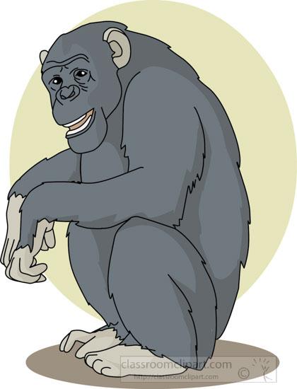 chimpanzee_sitting_04a.jpg