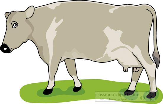 cow_on_grass_1.jpg