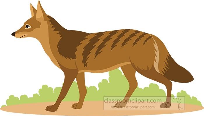 coyote-territorial-preditor-clipart.jpg
