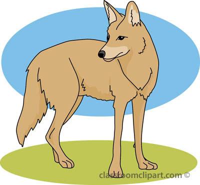 coyote_02a_4112.jpg