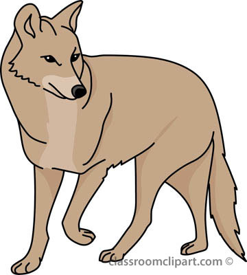 coyote_03a_4112.jpg