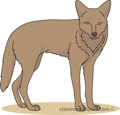 coyote_04B_4112.jpg
