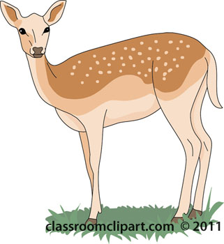 free deer clipart clip art pictures graphics illustrations rh classroomclipart com deer clipart png deer clipart black and white