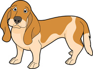 Search Results - Search Results for basset hound Pictures ...