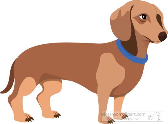 dachshund-clipart-1-617.jpg