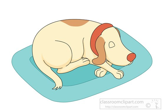 how to make the dog sleep in his bed