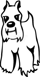 dog_47.jpg