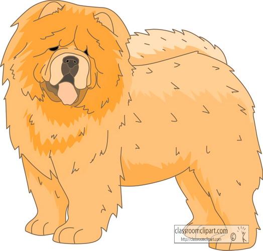dogs_chow_chow.jpg