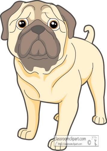 dogs_pug.jpg