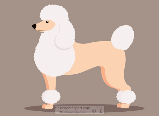 poodle-dog-sideview-clipart.jpg
