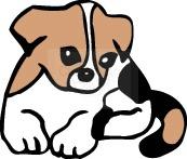 puppy_58.jpg