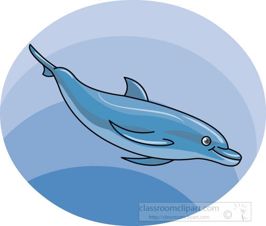 dolphin-12212_02A.jpg